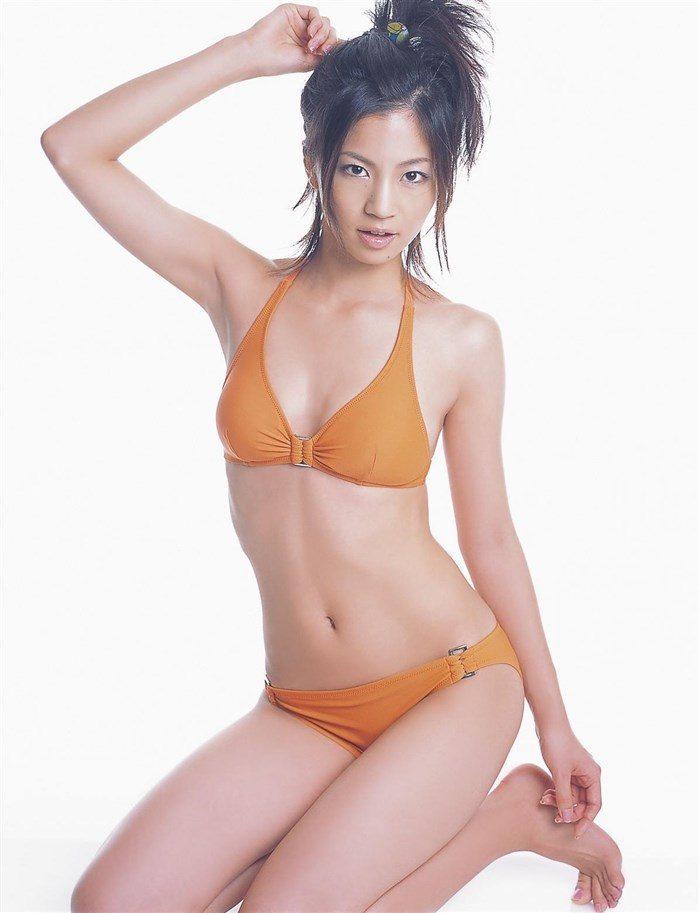 【画像】安田美沙子の無料で堪能できる高画質グラビアはこちら!0054manshu