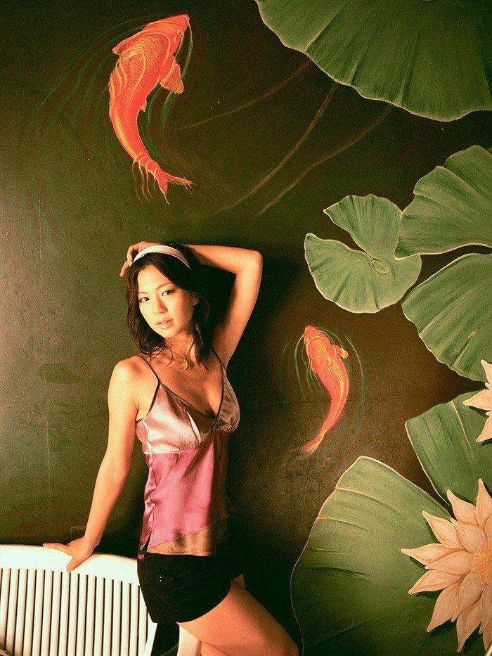 【画像】安田美沙子の無料で堪能できる高画質グラビアはこちら!0109manshu